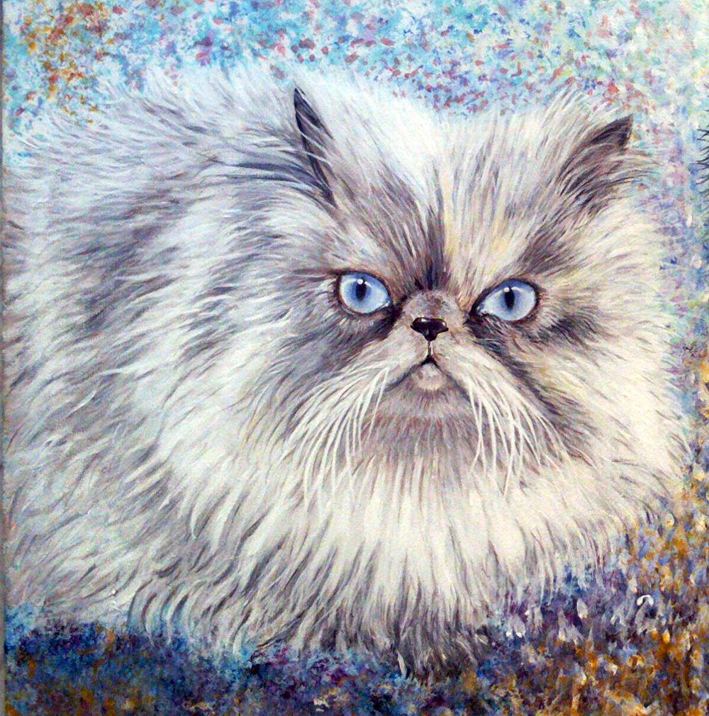 Ritratto di gatto – Acrilico su tela 40x50