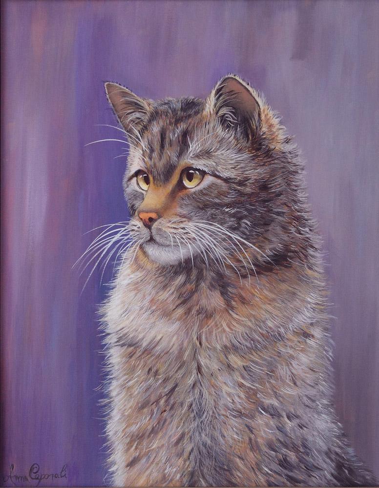 Gatto selvatico - Acrilico su tela 40x50