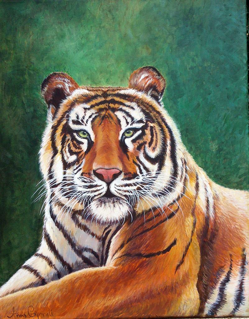 Tigre – Acrilico su tela 40x50